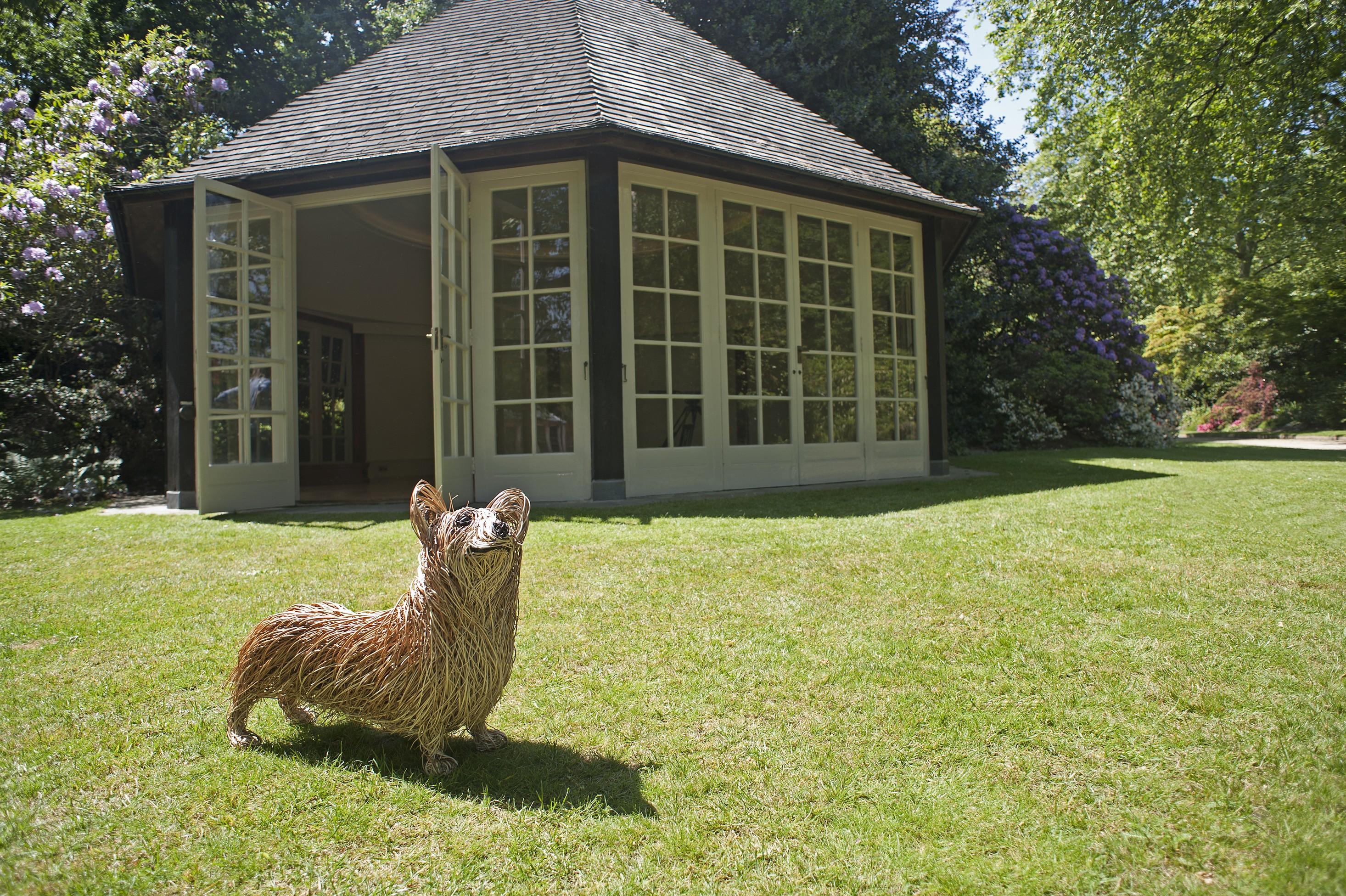 Bob's corgi has pride of place at Coronation Festival